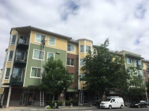 Exterior window cleaning in Jasper Apartments
