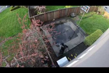 Pressure washing basketball court in Brier /video/