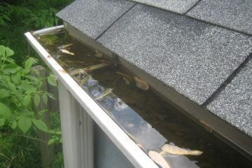 Gutters are such a part of the property that is often neglected when it comes to maintenance and cleaning.