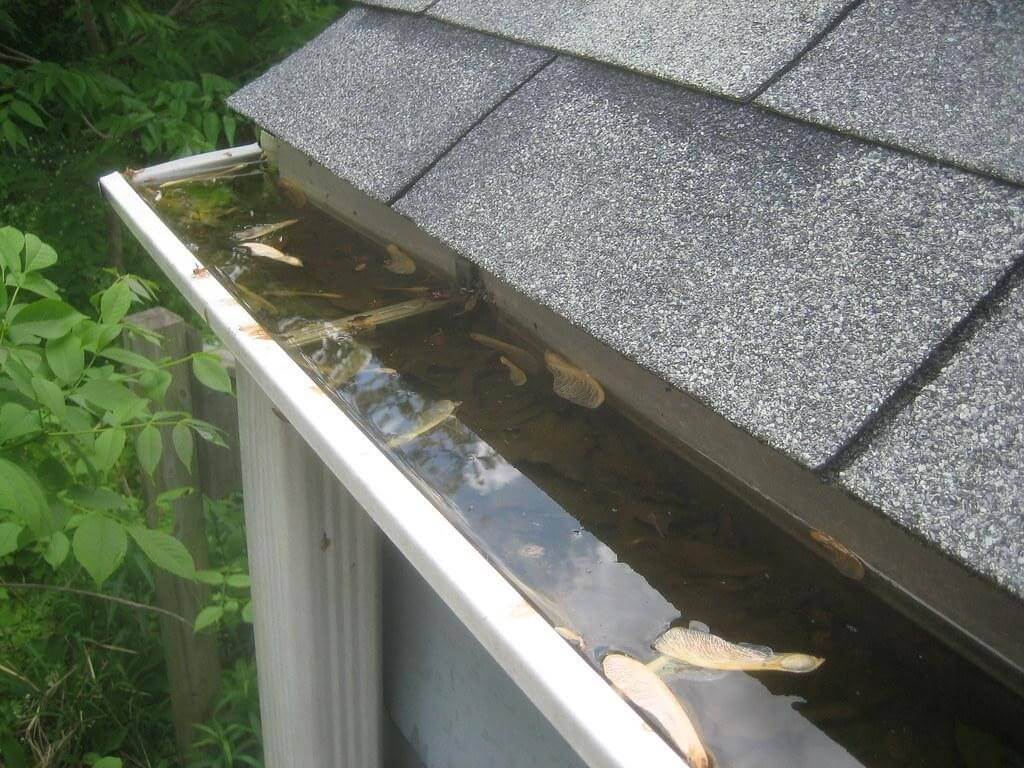 What accessories and tools do you need to clean your gutters