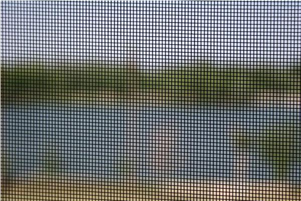 clean window screens