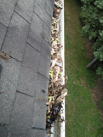 How often do you clean your gutters?