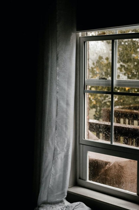 How to prevent mold build up on your windows?